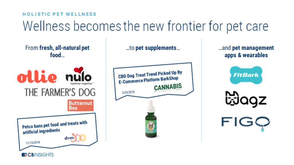 An infographic showing different examples of how the wellness trend is being integrated into pet tech.