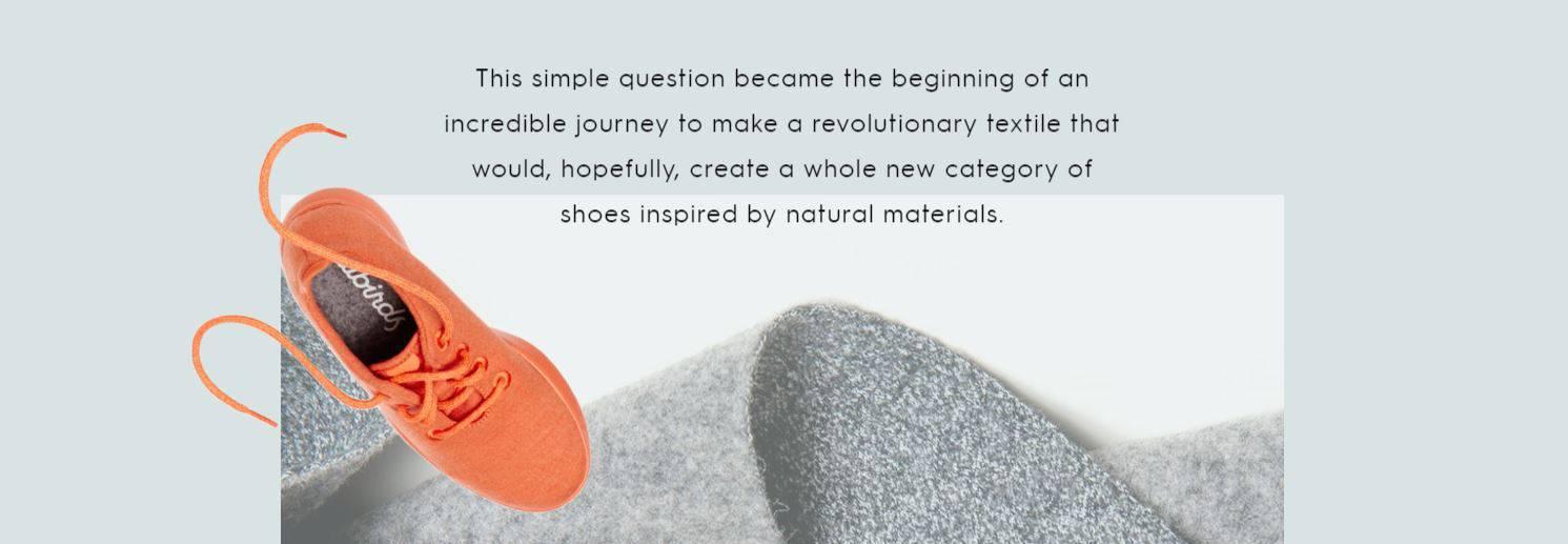 Online ad for the Allbirds footwear brand
