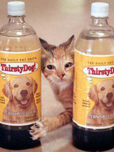 Thirsty Cat! and Thirsty Dog! drinking water