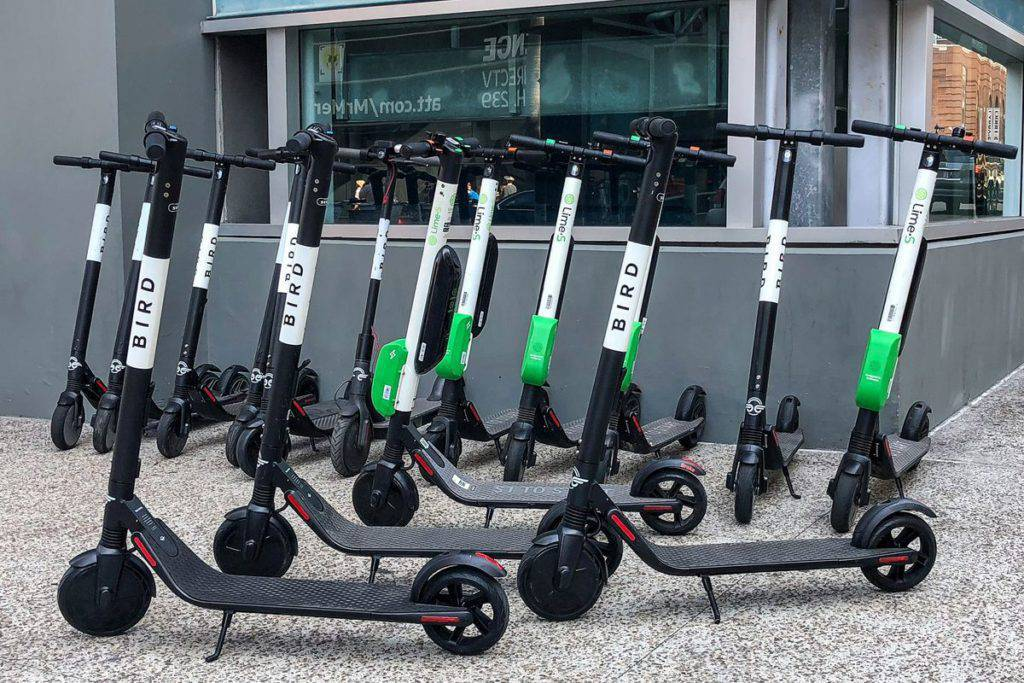 Bird scooters for rent