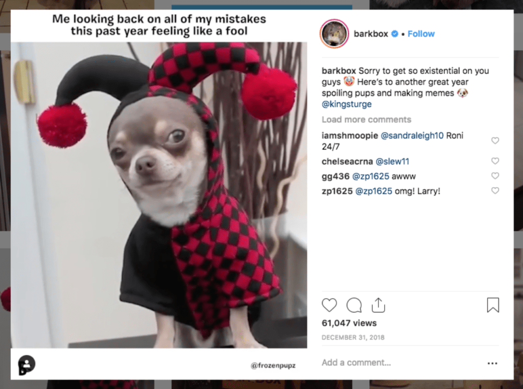 BarkBox chia sẻ bài đăng của một trong trang phục trên Instagram