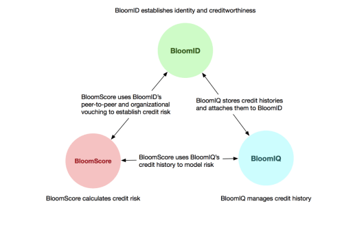 BloomID established identity and creditworthiness