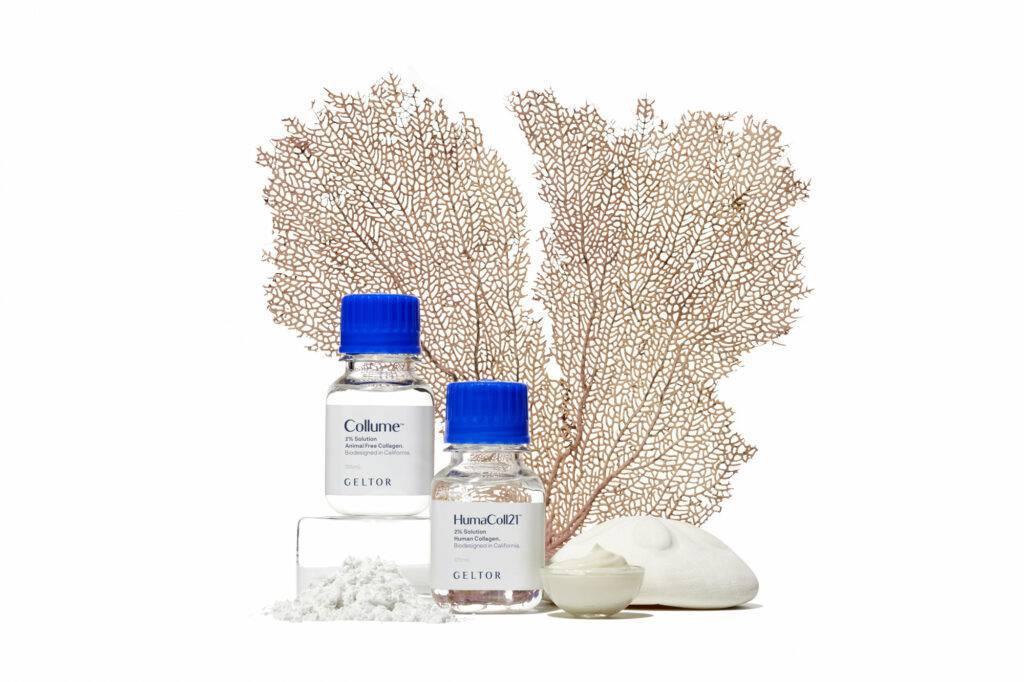 Image showing Geltor's vegan collagen products.